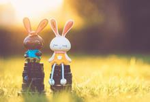 2020广西柳州市生态环境技术保障中心自主招聘10人公告