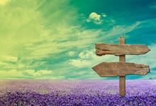 2020广东东莞市企事业单位第二期招聘博士25人公告