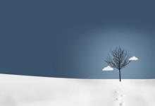 2021广西贵港市港北区奇石乡人民政府关招聘双违协管员3人公告